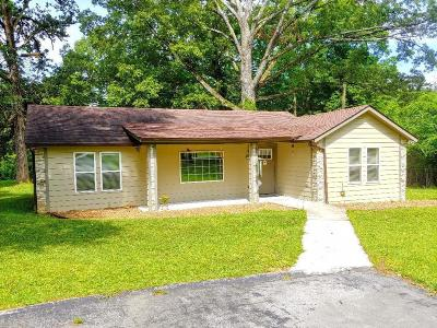 East Brainerd Single Family Home For Sale: 1005 Graysville Rd