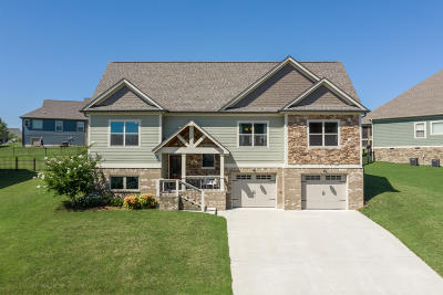 Ringgold Single Family Home For Sale: 270 Live Oak Rd