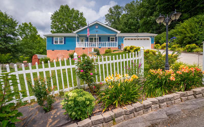 Ringgold Single Family Home Contingent: 3 Ridgewood Tr