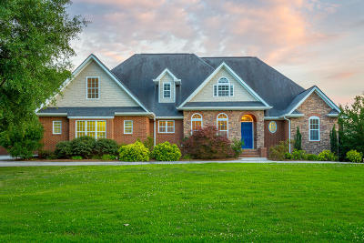 Ringgold Single Family Home For Sale: 194 Overlook Dr