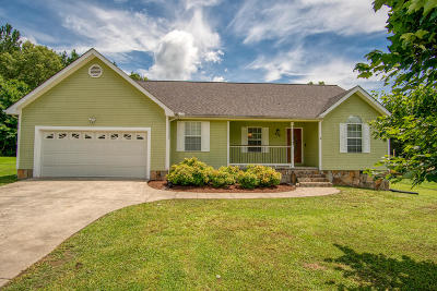 Ringgold Single Family Home For Sale: 476 Dylan Dr