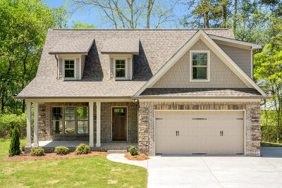 Chattanooga Single Family Home For Sale: 1001 Stone Ledge Ln #16