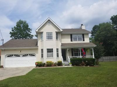 Chattanooga Single Family Home For Sale: 8626 Oak View Dr