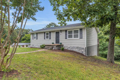 Ringgold Single Family Home For Sale: 14 June Ln
