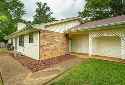 Hixson Single Family Home For Sale: 1320 Village Green Dr
