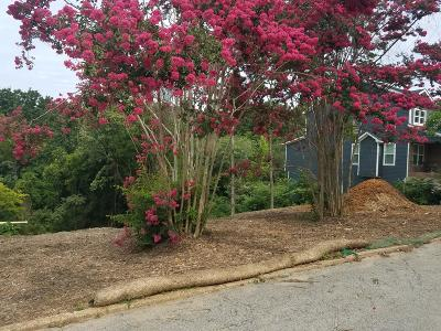Chattanooga Residential Lots & Land For Sale: 509 Tucker St