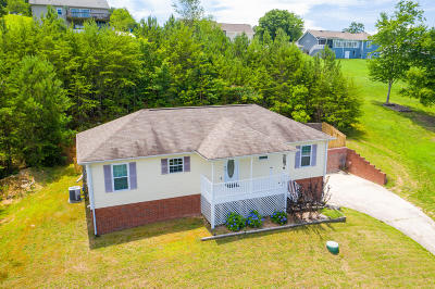 Soddy Daisy Single Family Home For Sale: 718 Lee Pike