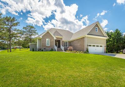 Single Family Home For Sale: 11233 Hixson Pike