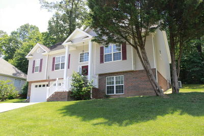 Ooltewah Single Family Home For Sale: 8340 Shadetree Ln #8