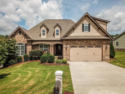 Soddy Daisy Single Family Home For Sale: 1094 Natural Way