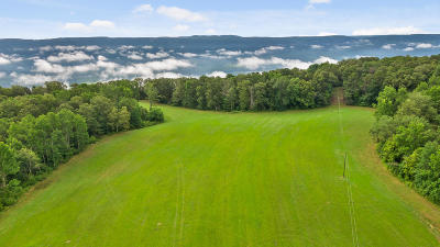 Residential Lots & Land For Sale: 2468 Brow Rd