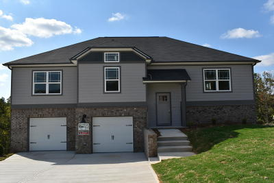 Ooltewah Single Family Home For Sale: 7382 Pfizer Dr #1204