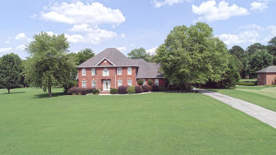Ringgold Single Family Home For Sale: 249 Classic Tr