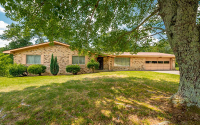 East Brainerd Single Family Home For Sale: 913 Shady Fork Rd