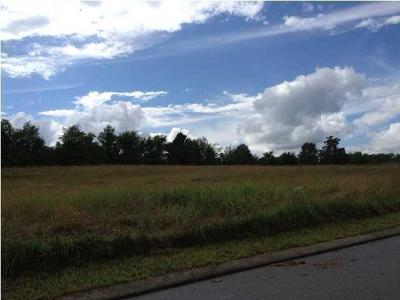 Residential Lots & Land For Sale: Village Dr #24