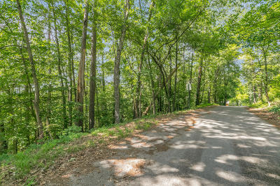 Chattanooga Residential Lots & Land For Sale: 567 Benson Dr