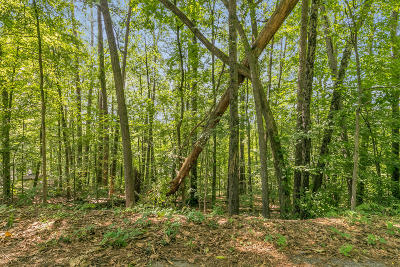 Chattanooga Residential Lots & Land For Sale: 579 Benson Dr