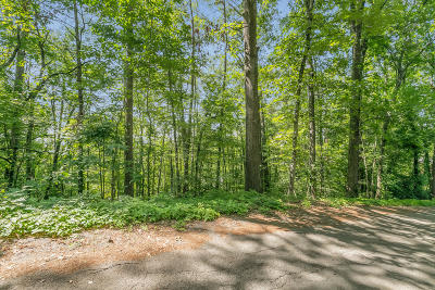 Chattanooga Residential Lots & Land For Sale: 581 Benson Dr
