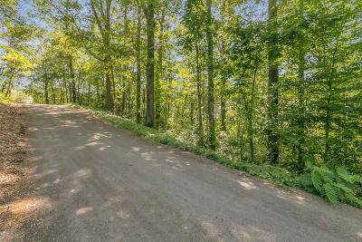 Chattanooga Residential Lots & Land For Sale: 593 Benson Dr