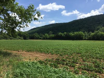 Residential Lots & Land For Sale: 303 Cranmore Cove Rd