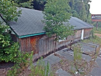 Trenton Residential Lots & Land For Sale: W Ga 136 Hwy