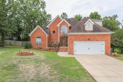 Chattanooga Single Family Home For Sale: 8043 Hamilton Mill Dr