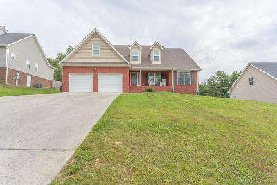 Chickamauga Single Family Home For Sale: 162 Red Oak Ridge Dr #Lot