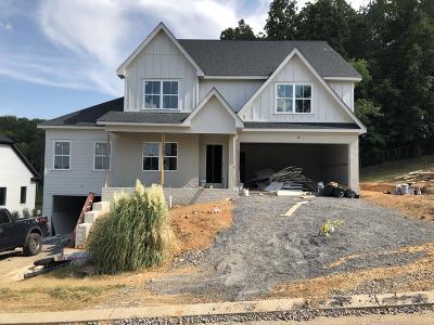 Chattanooga Single Family Home For Sale: 4581 Sailmaker Cir