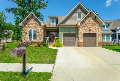 Apison Single Family Home For Sale: 10977 Prairie Lake Dr