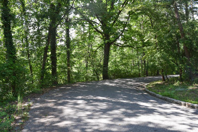Chattanooga Residential Lots & Land For Sale: 2 Minnekahda Pl
