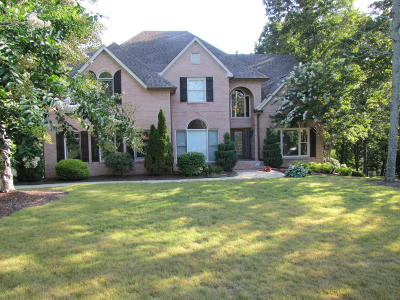 Chattanooga Single Family Home For Sale: 9007 Stoney Mountain Dr