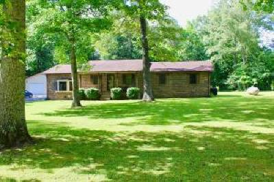 Grundy County Single Family Home For Sale: 419 Tatesville Rd