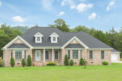 Ringgold Single Family Home For Sale: 1729 Ooltewah Ringgold Rd