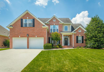 Chattanooga Single Family Home For Sale: 408 Stable View Cir