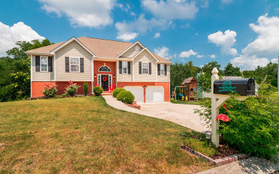 Ringgold Single Family Home For Sale: 213 Manor Dr