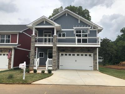 Chattanooga Single Family Home For Sale: 2293 Ashmore Ave