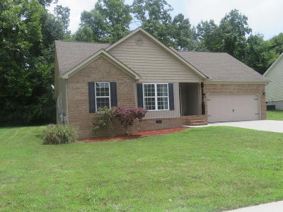 Ringgold Single Family Home For Sale: 140 Southern Dr
