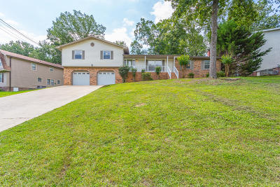 Chattanooga Single Family Home For Sale: 710 Stone Crest Cir