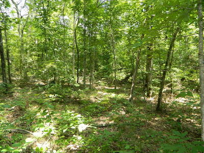 Jackson Residential Lots & Land For Sale: County Road 127