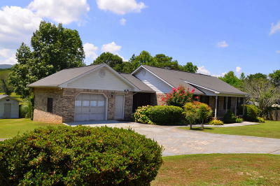 Chickamauga Single Family Home For Sale: 4472 N Marble Top Rd