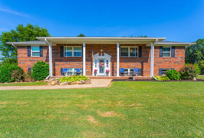 Rossville Single Family Home For Sale: 311 S Mission Ridge Dr