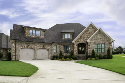 Ooltewah Single Family Home For Sale: 8091 Hampton Cove Dr #Lot 3