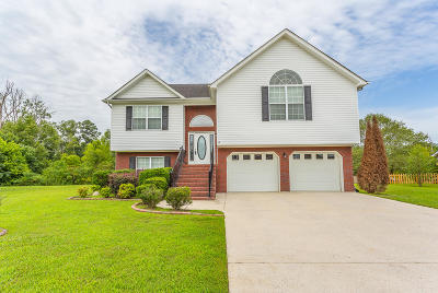 Ringgold Single Family Home For Sale: 75 Creeks Jewell Dr