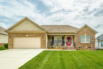 Hixson Single Family Home For Sale: 8505 Booth Bay Dr