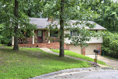 Chattanooga Single Family Home For Sale: 9579 Vera Lane
