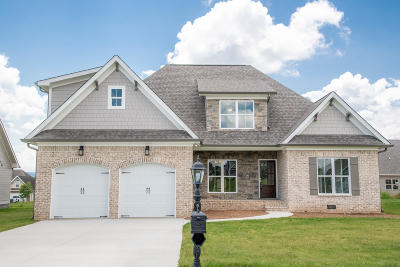 Chickamauga Single Family Home For Sale: 95 Fallen Leaf Dr #106