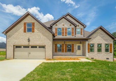 Cleveland Single Family Home For Sale: 129 Buck Head Dr