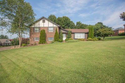 Ringgold Single Family Home For Sale: 569 Crestview Cir