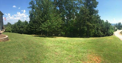 Residential Lots & Land For Sale: 9610 Mountain Lake Dr