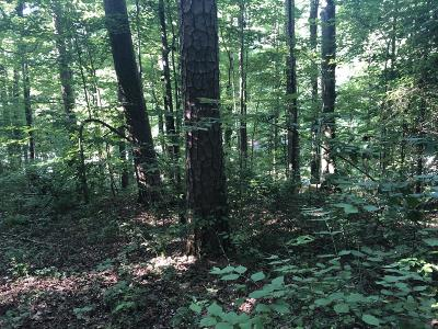 Residential Lots & Land For Sale: River Canyon Rd #1 & 2a